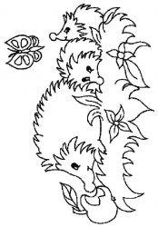 plansa de colorat animale arici de colorat p12