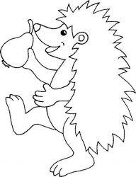 plansa de colorat animale arici de colorat p13