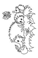 plansa de colorat animale arici de colorat p31
