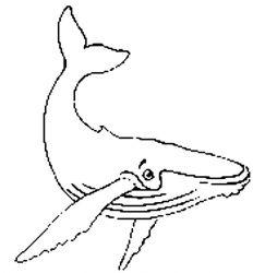 plansa de colorat animale balene de colorat p13
