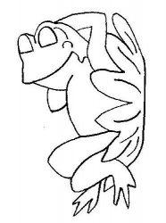 plansa de colorat animale broscute de colorat p08
