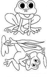 plansa de colorat animale broscute de colorat p40