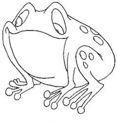 plansa de colorat animale broscute de colorat p47