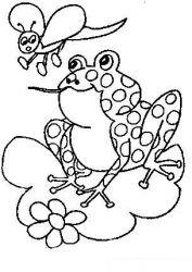 plansa de colorat animale broscute de colorat p52