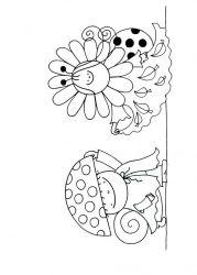 plansa de colorat animale buburuze de colorat p17