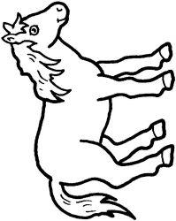 plansa de colorat animale cai de colorat p05