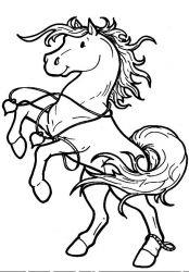 plansa de colorat animale cai de colorat p31