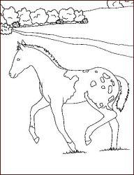plansa de colorat animale cai de colorat p39