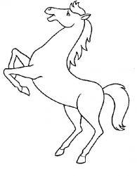 plansa de colorat animale cai de colorat p42
