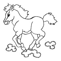 plansa de colorat animale cai de colorat p48