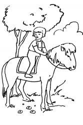 plansa de colorat animale cai de colorat p56