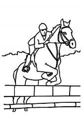 plansa de colorat animale cai de colorat p65