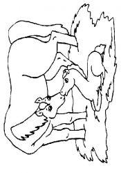 plansa de colorat animale cai de colorat p75