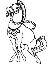 plansa de colorat animale cai de colorat p79