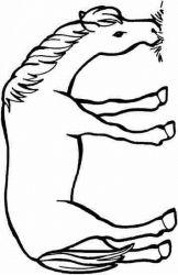 plansa de colorat animale cai de colorat p87