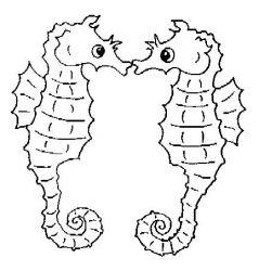 plansa de colorat animale caluti de mare de colorat p07