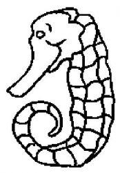 plansa de colorat animale caluti de mare de colorat p09