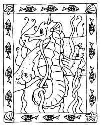 plansa de colorat animale caluti de mare de colorat p36