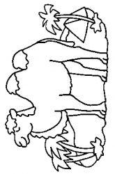 plansa de colorat animale camile de colorat p04