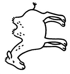 plansa de colorat animale camile de colorat p08