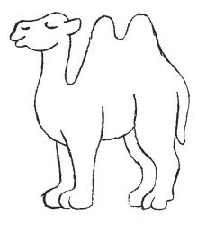 plansa de colorat animale camile de colorat p09