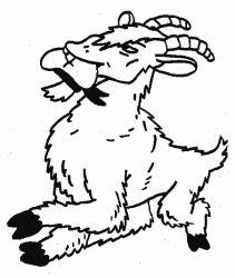 plansa de colorat animale capre de colorat p04