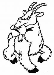 plansa de colorat animale capre de colorat p07