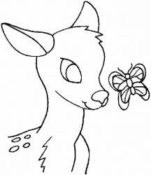 plansa de colorat animale caprioare de colorat p07