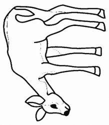 plansa de colorat animale caprioare de colorat p15