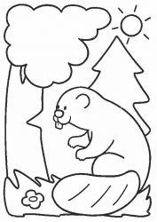 plansa de colorat animale castori de colorat p08