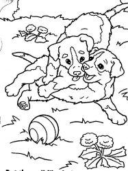 plansa de colorat animale catelusi de colorat p01