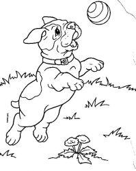 plansa de colorat animale catelusi de colorat p02
