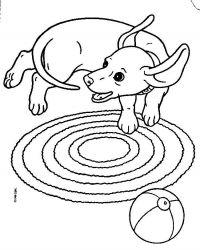 plansa de colorat animale catelusi de colorat p03