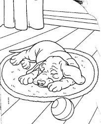 plansa de colorat animale catelusi de colorat p05