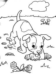 plansa de colorat animale catelusi de colorat p07