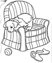 plansa de colorat animale catelusi de colorat p09