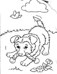 plansa de colorat animale catelusi de colorat p12