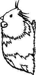 plansa de colorat animale cobai de colorat p02