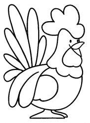 plansa de colorat animale cocosi de colorat p04