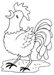 plansa de colorat animale cocosi de colorat p17
