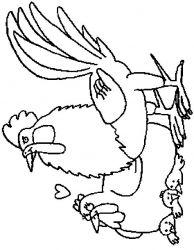 plansa de colorat animale cocosi de colorat p30