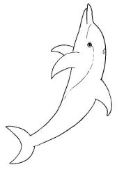 plansa de colorat animale delfini de colorat p02