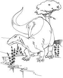 plansa de colorat animale dinozauri de colorat p11