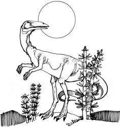 plansa de colorat animale dinozauri de colorat p12