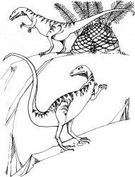 plansa de colorat animale dinozauri de colorat p13