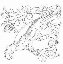 plansa de colorat animale dinozauri de colorat p19