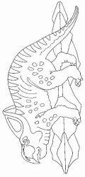 plansa de colorat animale dinozauri de colorat p20