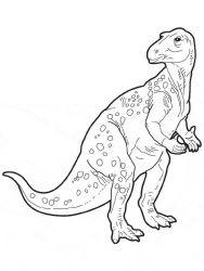 plansa de colorat animale dinozauri de colorat p54