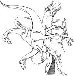plansa de colorat animale dinozauri de colorat p55