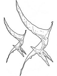 plansa de colorat animale dinozauri de colorat p57